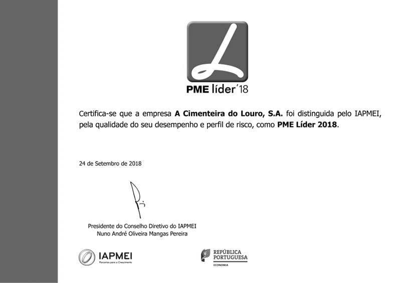 Certificate - PME Lider 2018