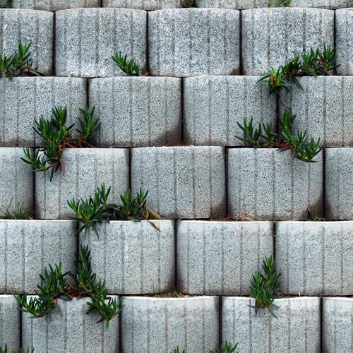 Muros Decorativos