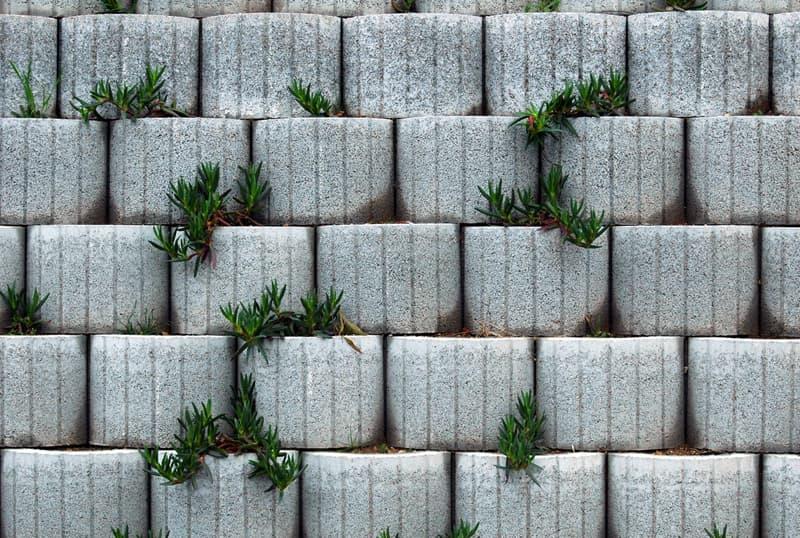 Muros Floreiras